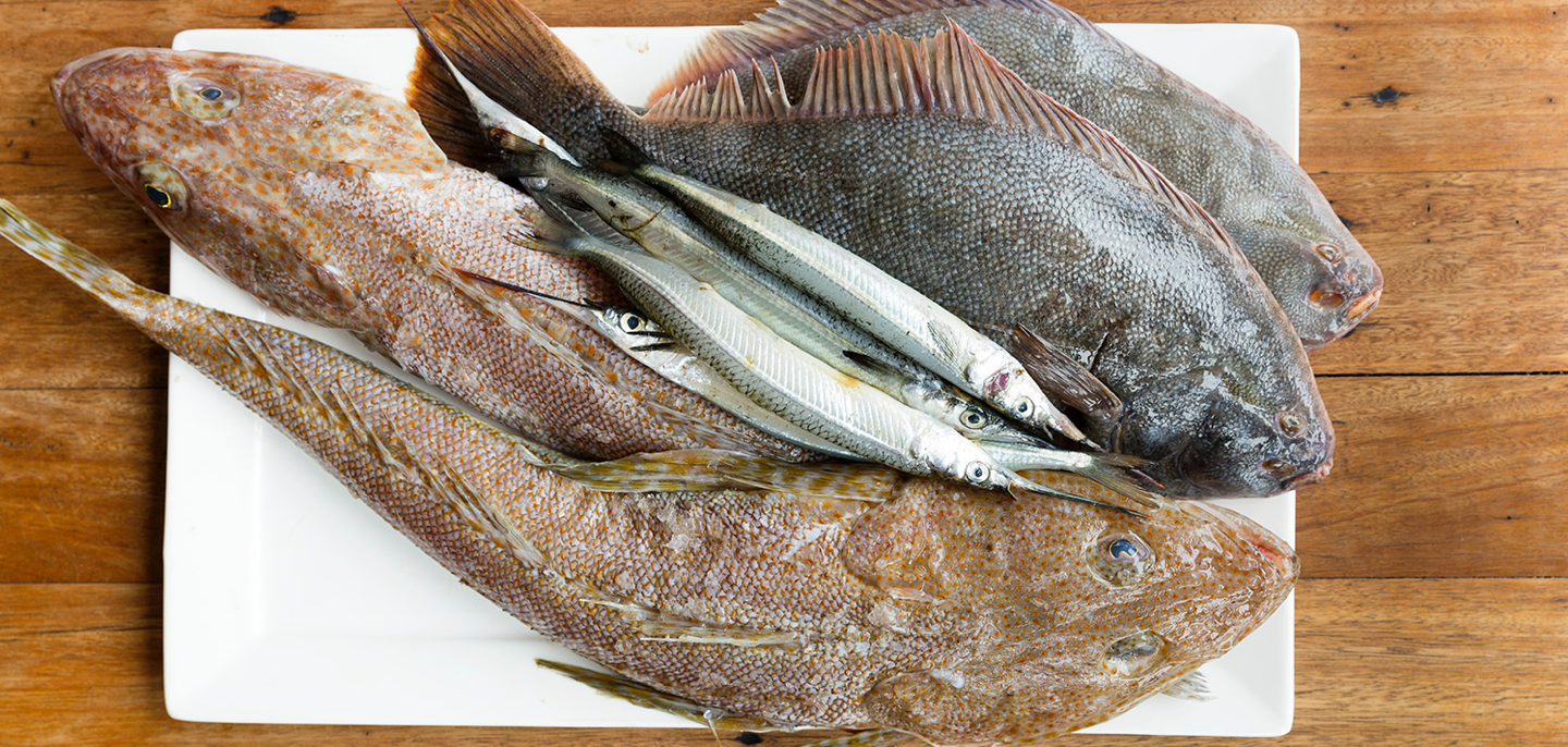 labimba-our-suppliers-fish@2x